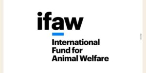 Logo de l'IFAW