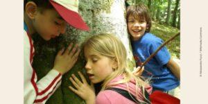 Photo d'enfants écoutant un arbre