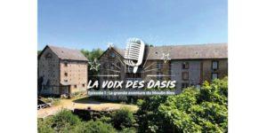 Logo la Voix des Oasis