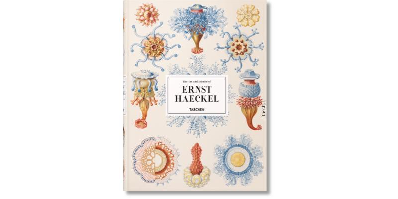 Première page de Art et science de Haeckel