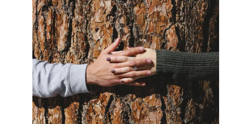 Connexion aux autres, au monde