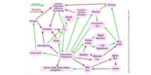 Schéma explicatif des boucles de rétroaction