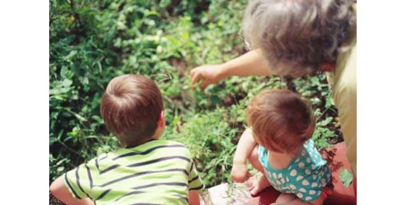Grand-parent montrant à ses petits-enfants la nature devant eux