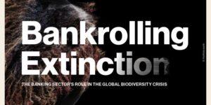 Visuel de Bankrolling Extinction par portfolio.earth