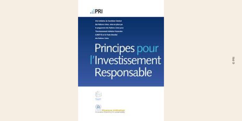 Visuel des Principes pour l'Investissement Responsable de l'UNEP FI