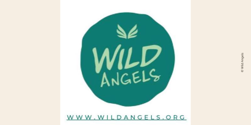 Logo de Wild Angels