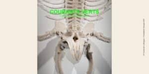 Photo œuvre de Couturier Lafargue issue du catalogue Courants verts