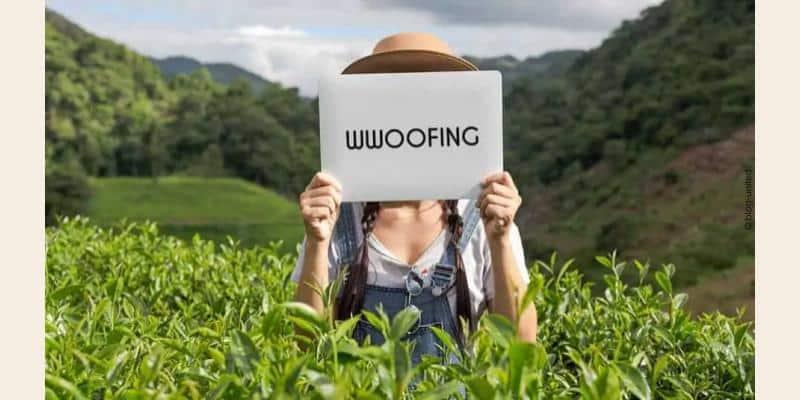 Image de wwoofing